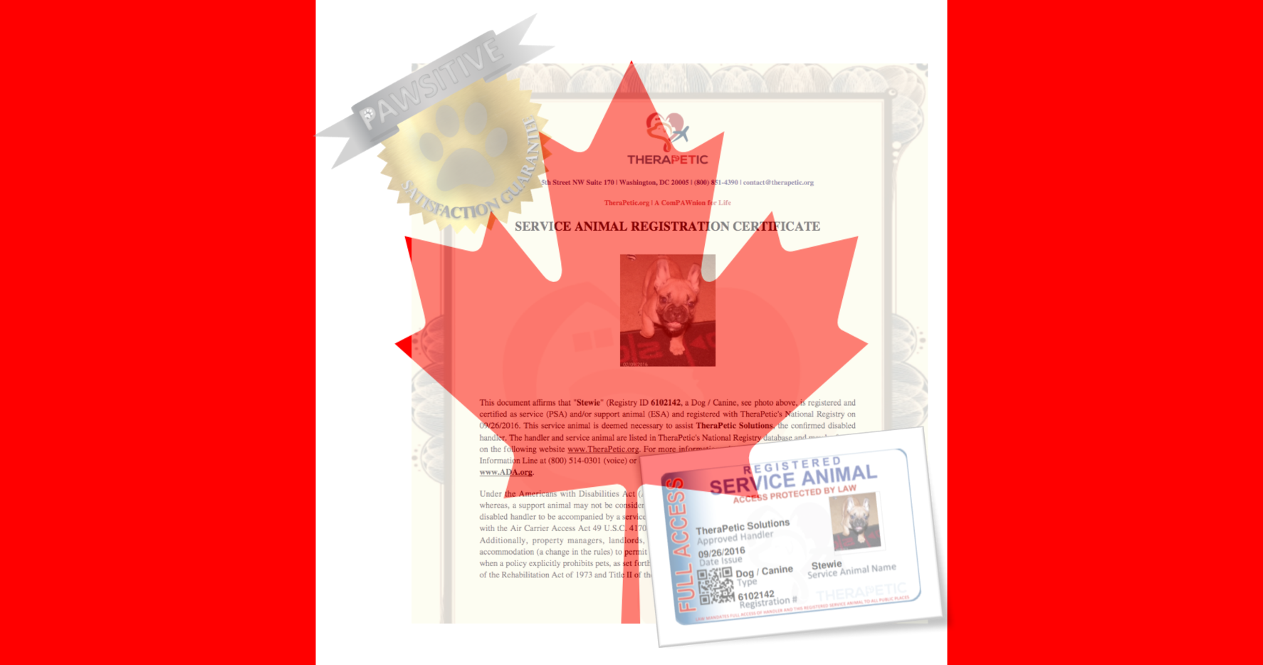 Canada Laws And Guidance For Service And Support Animals Service Dog And Emotional Support Animal Letters Registration