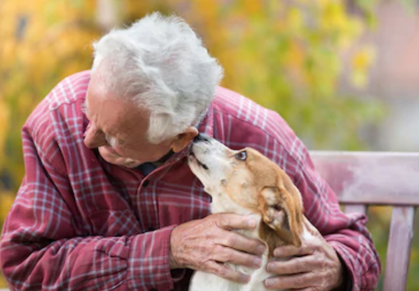 Emotional Support Animal Kissing Man